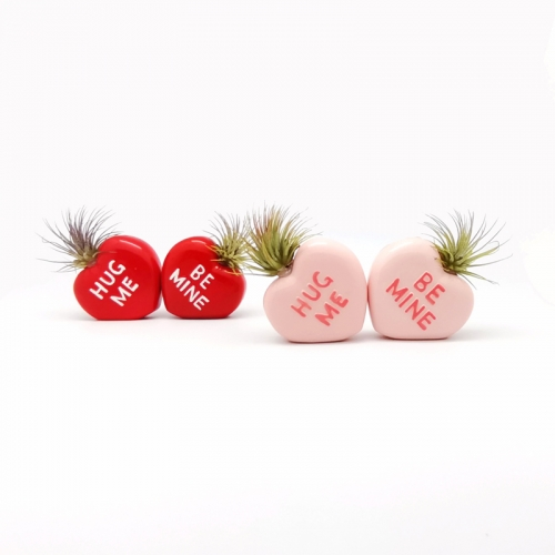 Heart Air Plant Mounting Bases With 2 Colors Assorted