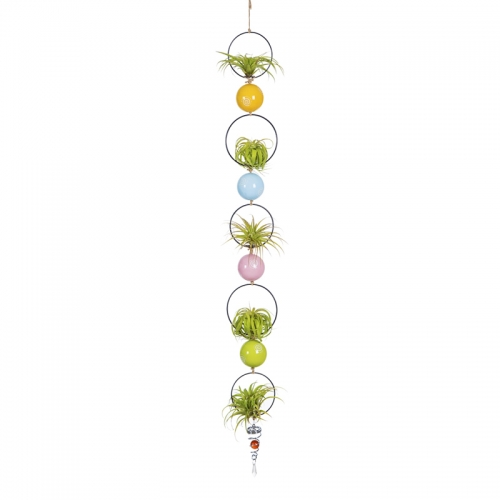 Tillandsiart Rings & Balls Air Plant Hanging Display Set - 9Pcs DIY Kit
