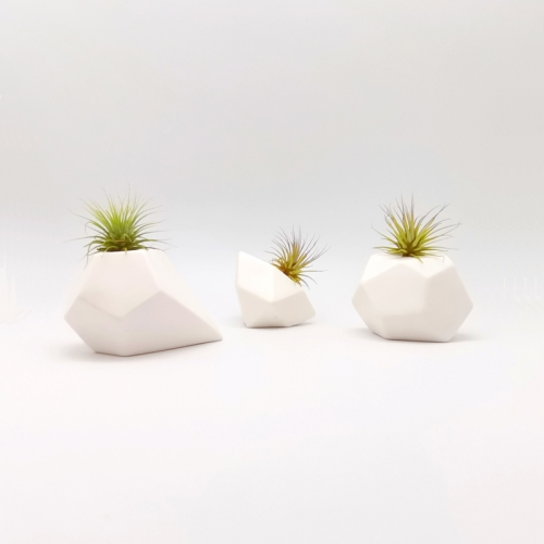 3Pcs Geometry Air Plant Mounting Bases Set